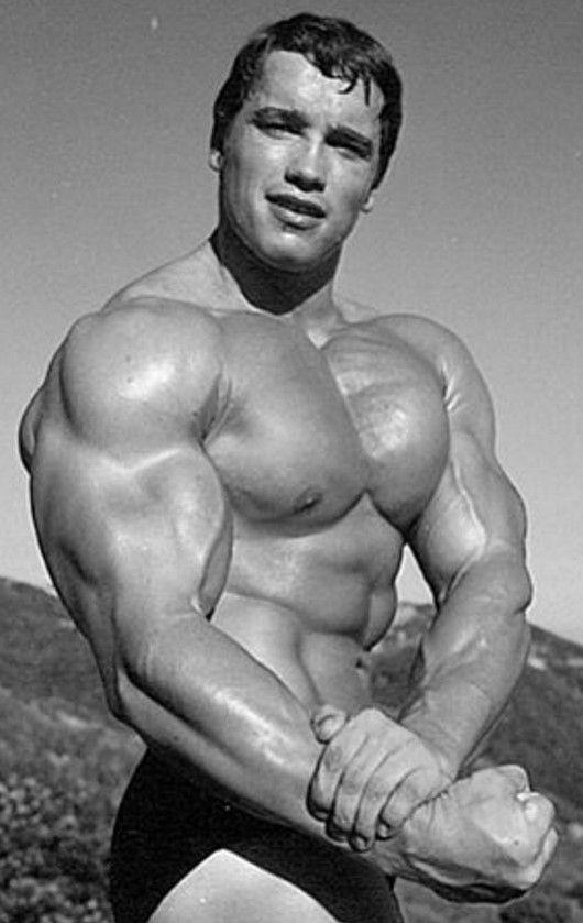301 best ARNOLD SCHWARZENEGGER images on Pinterest Bodybuilding - fresh arnold blueprint day 11