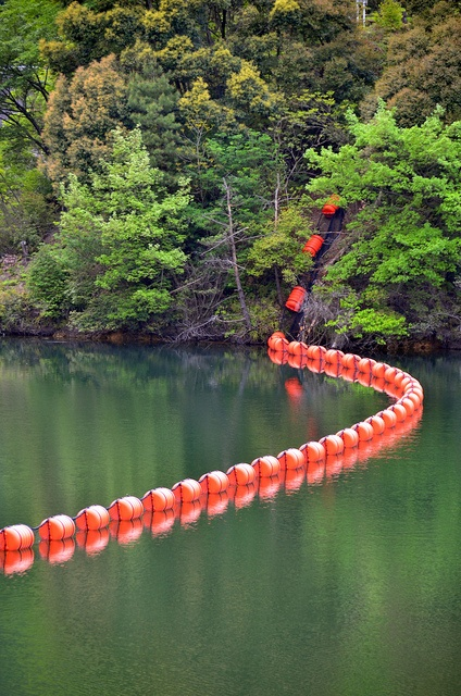 Fukuoka, JapanPlaces Travel, Fukuoka Japan, Beautiful Japan, Japan Http Japanweek Us New, Japanweek Subscribe, Jinya Dam, Japan Japanweek, Orange Floating, Dam Orange