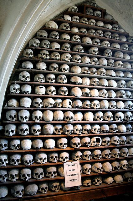 St Leonards Ossuary, Hythe - wall of skulls. Photo by xtinalamb #ossuary #skulls #bones
