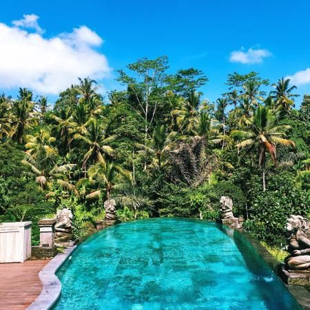 Photos of The Kayon Resort, Ubud - Hotel Images - TripAdvisor