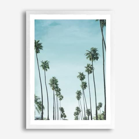 Featuring tropical palm trees in California set against a clear blue sky, this art print was originally hand painted by our in-house artist team, and now available as a reproduction giclée art print (archival using pigment inks), unframed or framed. Size & frame colour options available. We ship worldwide. #ThePrintEmporium #palms #palmtrees #tropicalvibes #cali #tropicalprint #tropicalart #artprint #california www.theprintemporium.com.au