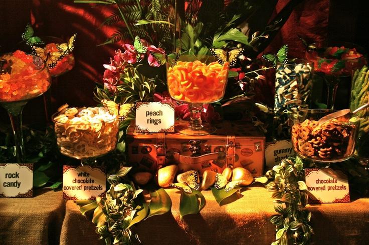 Safari Buffet Tablescape Catering Displays Pinterest