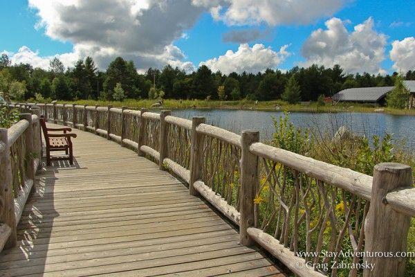 Adventure In The Adirondacks #EatPlayLoveNY #Adventure #Outdoors #Adirondacks #ILoveNY