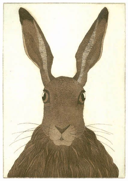 Bill Yardley: Easter Bonnets, Young Bunnies, Friends, Brown Haring, Art Animal, Harey Faces, Haring Faces, Animal Observational, Art Bunnies