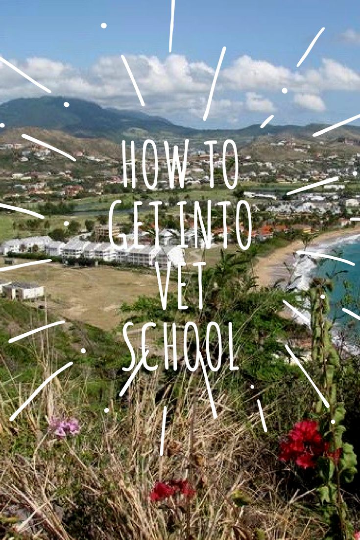 How to get into Veterinary School. See how Hannah survived her Vet school journey on a tropical island at Ross University School of Veterinary Medicine and loved every minute of it.