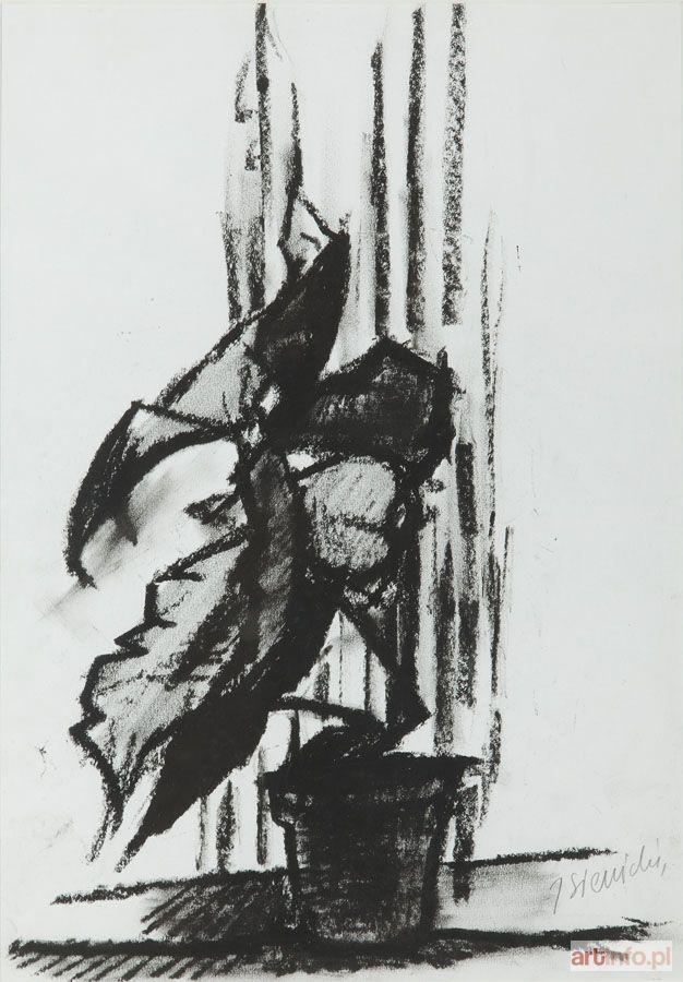 Jacek SIENICKI ● Kwiat w doniczce ●