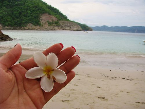 """Beauty in Hand"" Student Photo Isla de Tortuga, Costa Rica"