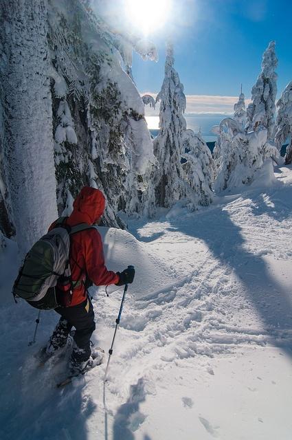 Winter Adventure by vankufer, via Flickr
