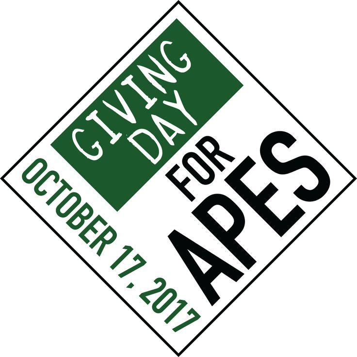 GIVING FROM THE HEART : DOn't forget to support Orangutan Foundation International of Giving Day For Apes 2017!. Here's how you can help.....