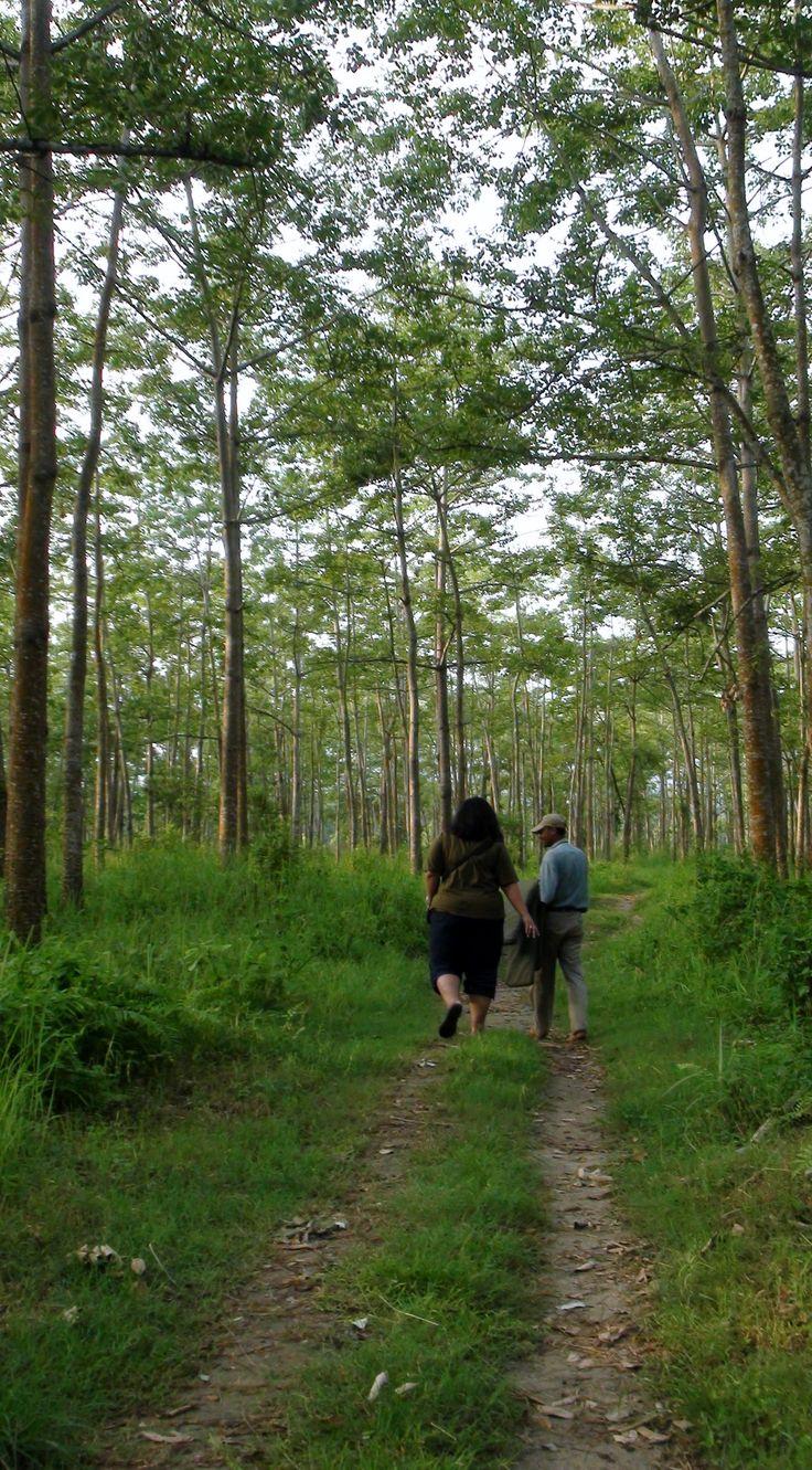 Don't forget to explore the Shivapuri Nagarjun National Park