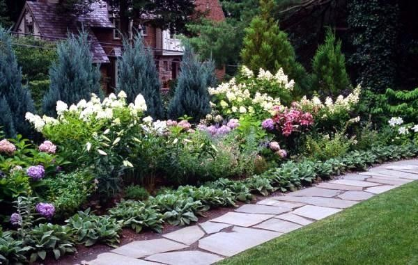Long Narrow Flower Bed Ideas Backyard Garden Landscape Screen
