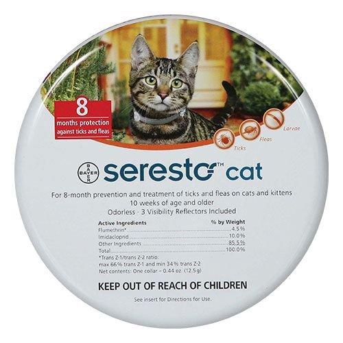 Absolutely No More Ticks! The Best Cat Flea Collar That Exists