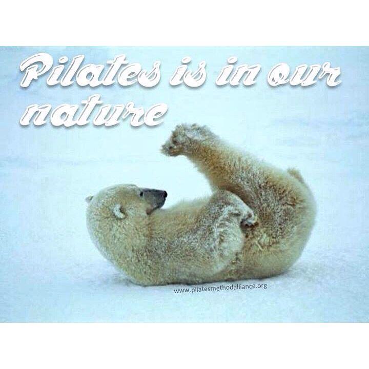 """Pilates hareketleri doğal hayattan esinlenerek icat edilmiştir. Amaçlarından biri de insan doğasındaki hareketlerin yeniden kazandırılmasıdır. """"Pilates yap, kendin ol!"""" #pilates #doğal #KendinOl"""