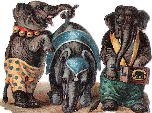 Oblaten Glanzbild scrap die cut chromo Zirkus circus cirque Elefant elephant