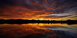 Sunset Serpent - Gold Coast, QLD