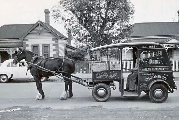 Milk home delivered to your home.Horse and cart of the Craig-Lea Dairy,Thornbury,Melbourne.A♥W