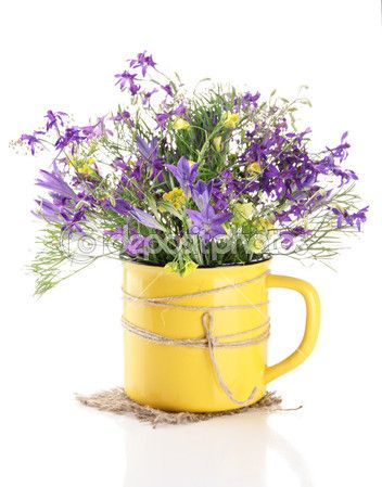 depositphotos_28802727-Beautiful-bouquet-of-wildflowers-in-cup-isolated-on-white.jpg (352×449)