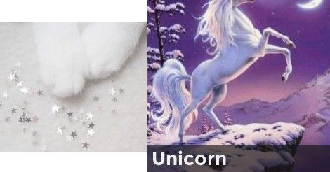 Unicorn | Which Magical Creature Matches Your Personality?