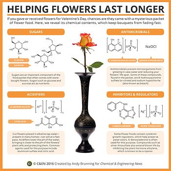 Periodic Graphics: Helping Flowers Last Longer http://cen.acs.org/content/dam/cen/94/8/09408-scitech3-flowers.pdf