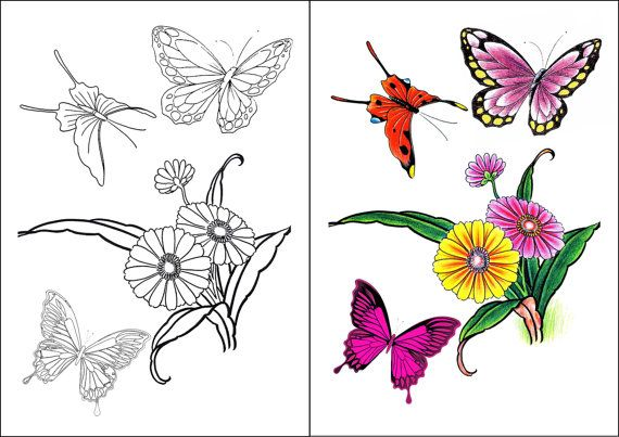 flower butterfly wings coloring pages colouring adult