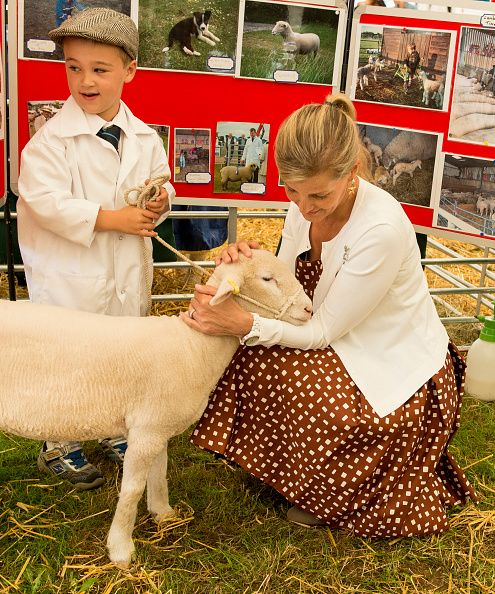 Sophie Countess of Wessex views some sheep during a visit to the New Forest show on July 26 2016 in Brockenhurst England