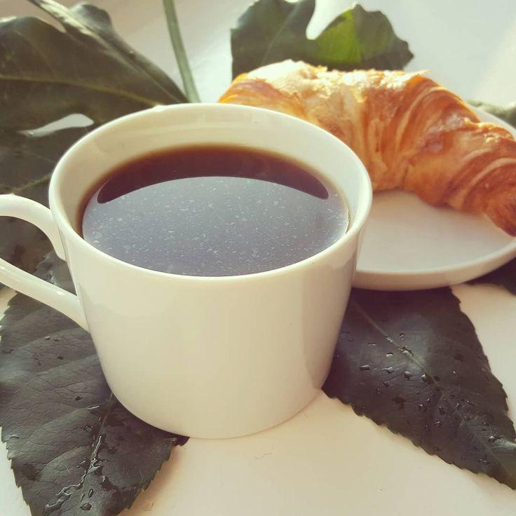 🌞☕#Sonntag ist #Kaffeezeit Heute mit #CafeGregue - eine Kaffee Spezialität von der Insel La Reunion  👉Mehr zum Kaffeeanbau und der Zubereitung auf #laReunion  http://bunaa.de/de/la-reunion/