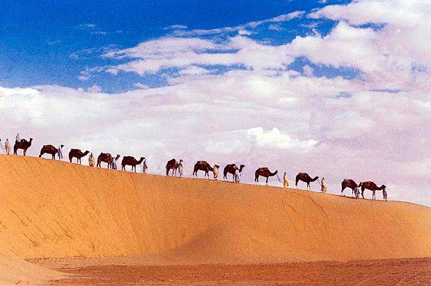 Deserto do Saara, África O Deserto do Saara se estende por 10 países do norte da África, ocupando um espaço semelhante ao tamanho do Brasil. Trata-se de um dos lugares mais selvagens e áridos do planeta, mas também tem algumas das paisagens mais bonitas, com suas dunas que parecem não acabar nunca. Foto: Colin Antill-fotoseeker.com
