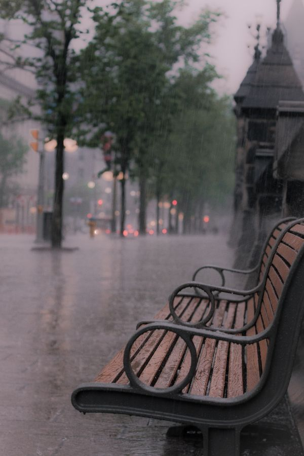 Theres just something about park benches that are empty that always hits me...its like a haven for untold stories. Lluvia #Photography