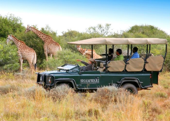 Luxury family escapes: 5 of the world's most unique experiences #family #travel #safari