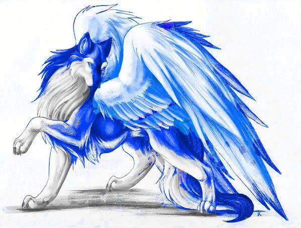 Аниме волки девочки с крыльями картинки