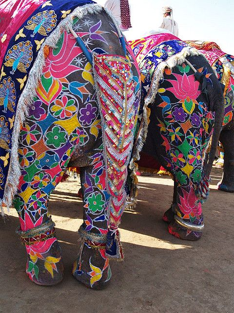 Elephant rear decorated and painted. I would never try to paint an animal, I just like the designs.