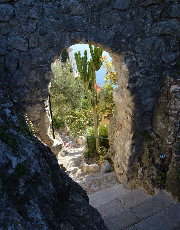 Foto genomen in de botanische tuin in Eze Village, een klein dorpje aan de Middellandse zee. De tuin is een heerlijke plek om te vertoeven. Je hebt er prachtig uitzicht over de Middellandse zee en ku