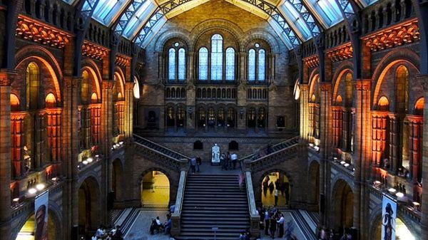 Musée d'Histoire Naturel South Kensington