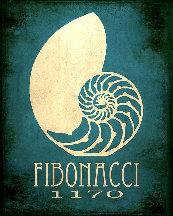 Fibonacci Art Print 8x10 Science Poster Nautilus by meganlee
