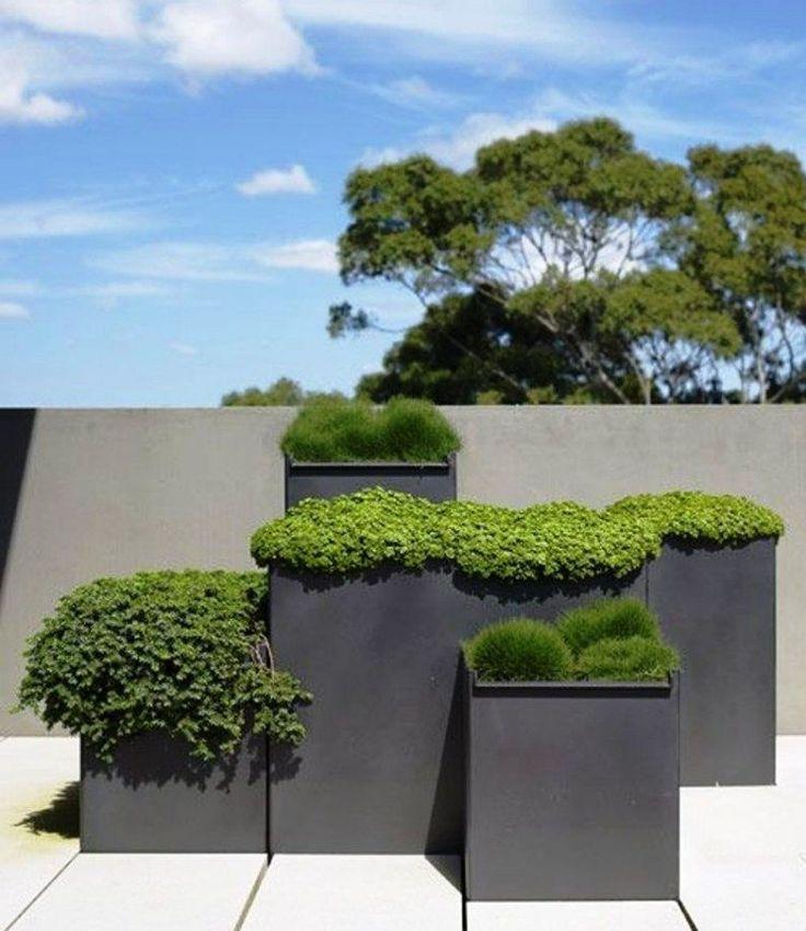 die besten 25 gro e pflanzk bel ideen auf pinterest. Black Bedroom Furniture Sets. Home Design Ideas
