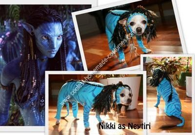 Homemade Avatar Dog Costume: When I looked at my chihuahuas ears, I got inspired because her ears reminded me of the movie AVATAR. I decided to make a super fan costume for her, Neytiri