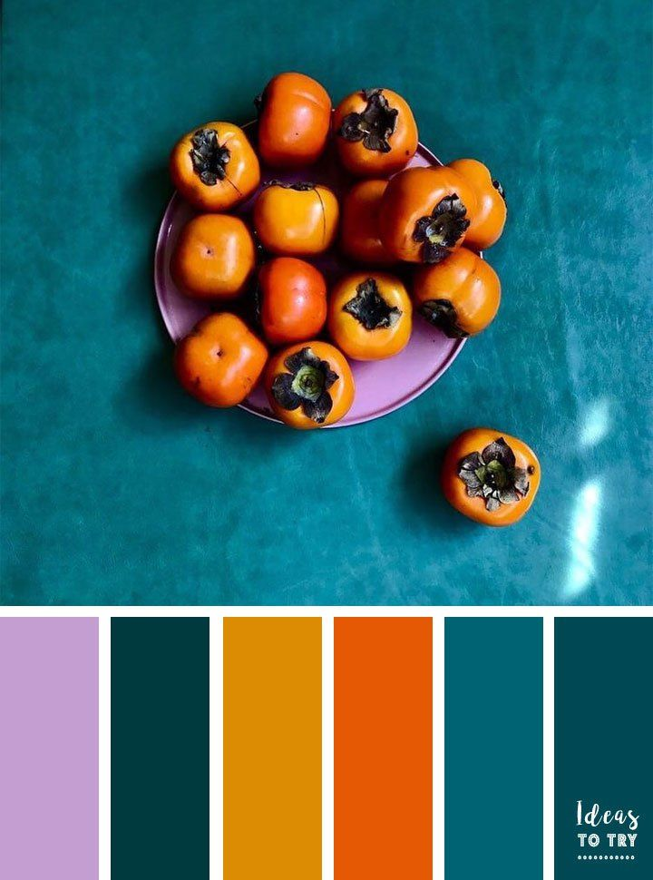 Ginger lilac burnt orange and teal autumn color inspiration , fall color palette, home color ideas ,home painting ideas