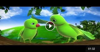 OLXTUBE: JoJo & Buddy birds songs ,parrot songs