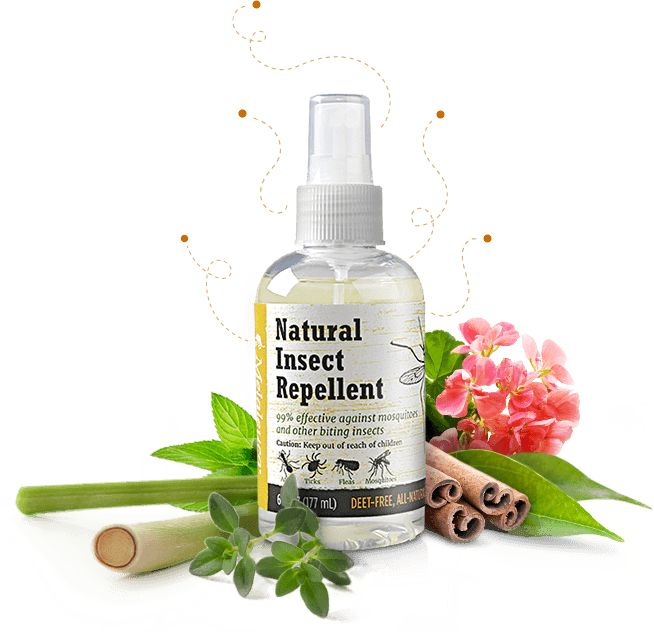 Best Natural Mosquito And Tick Repellent