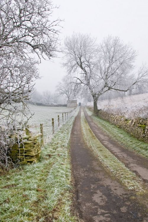 Frosty walk to the village