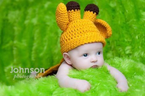 http://hodgepodgecrochet.wordpress.com: Giraffe Photo Prop