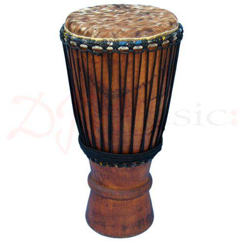 8 Best Musical Instrument