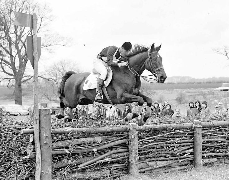 This is an image from the first Badminton Trials in 1949 and it was billed the most important Horse event. #throwbackthursday #tbt #horsecare #equestrianaccessories