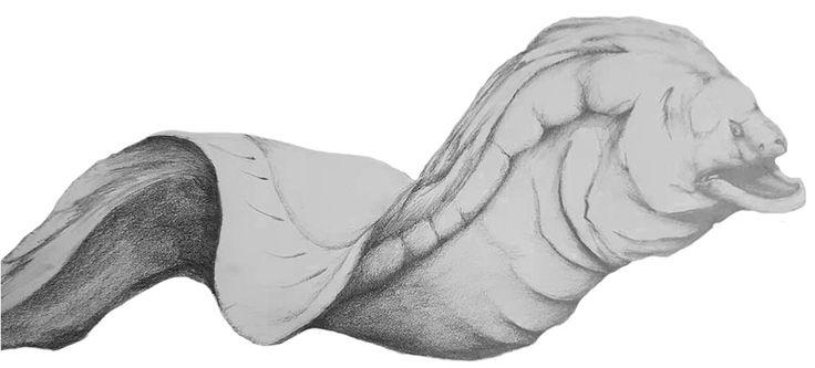 Moray Eel (2B Pencil) 2017