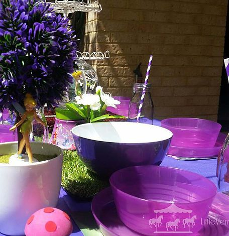 Tinkerbell fairy theme party hire packages for children in Perth, WA