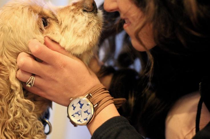 Watch dog: Watch Dogs, Su Bracelets, Suede Bracelets, Watches Dogs