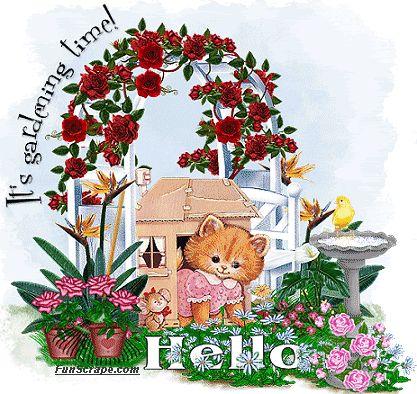 Résultats de recherche d'images pour «flowers cat illustration comments»