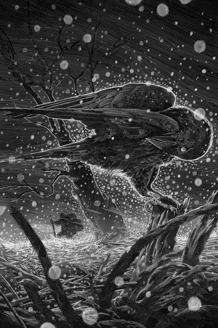 """nicolasdelort: """" Franz Schubert's Winterreise - the second print in my classical series forBlack Dragon Press will go on sale this Wednesday at 3pm UK time (BST)from the Black Dragon Press shop http://blackdragonpress.bigcartel.com/ The release will..."""