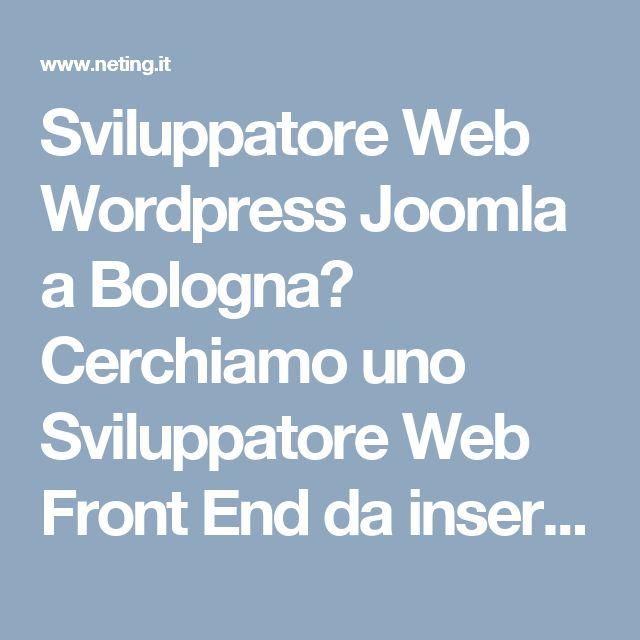 Sviluppatore Web Wordpress Joomla a Bologna? Cerchiamo uno Sviluppatore Web Front End da inserire nel nostro team. Il candidato sarà incaricato della realizzazione di progetti web (siti, landing, minisiti, etc), progetti di e-commerce, realizzazione di dem/newsletter e lo sviluppo di progetti interni.