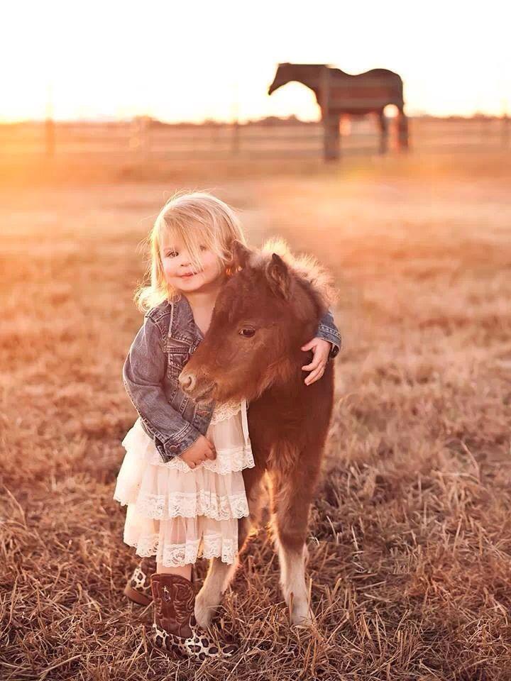 25 chevaux miniatures qui vont vous donner envie de les adopter comme animaux de…